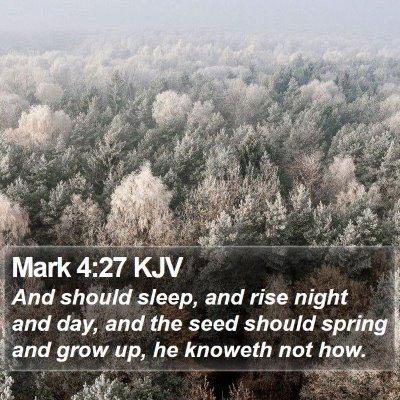 Mark 4:27 KJV Bible Verse Image