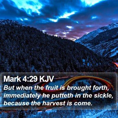 Mark 4:29 KJV Bible Verse Image