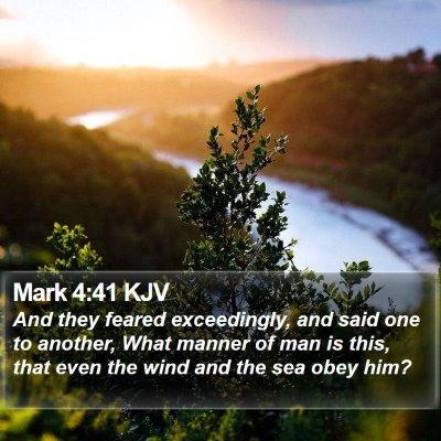 Mark 4:41 KJV Bible Verse Image