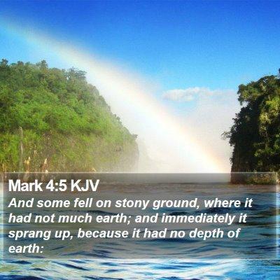 Mark 4:5 KJV Bible Verse Image