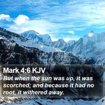 Mark 4:6 KJV Bible Verse Image