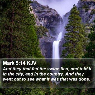 Mark 5:14 KJV Bible Verse Image