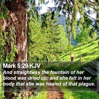 Mark 5:29 KJV Bible Verse Image