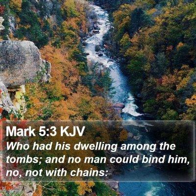 Mark 5:3 KJV Bible Verse Image