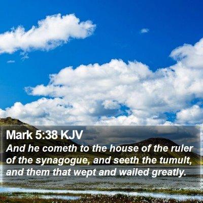 Mark 5:38 KJV Bible Verse Image