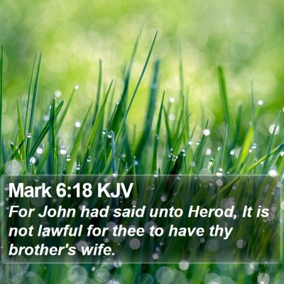 Mark 6:18 KJV Bible Verse Image