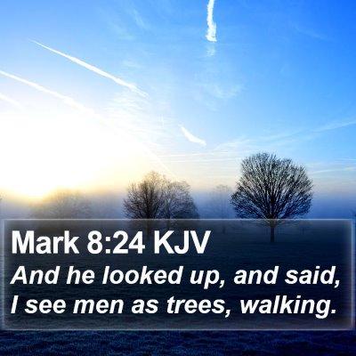 Mark 8:24 KJV Bible Verse Image