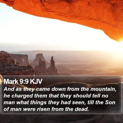Mark 9:9 KJV Bible Verse Image