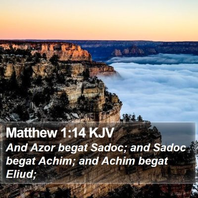 Matthew 1:14 KJV Bible Verse Image