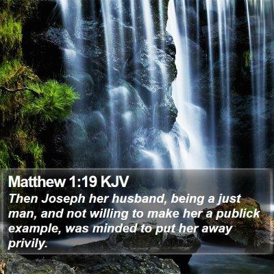 Matthew 1:19 KJV Bible Verse Image