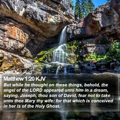 Matthew 1:20 KJV Bible Verse Image