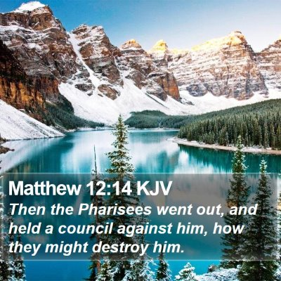 Matthew 12:14 KJV Bible Verse Image