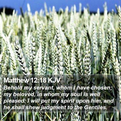 Matthew 12:18 KJV Bible Verse Image