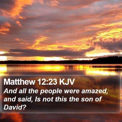 Matthew 12:23 KJV Bible Verse Image
