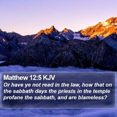 Matthew 12:5 KJV Bible Verse Image