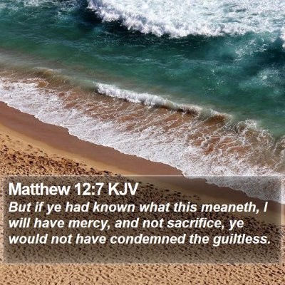 Matthew 12:7 KJV Bible Verse Image
