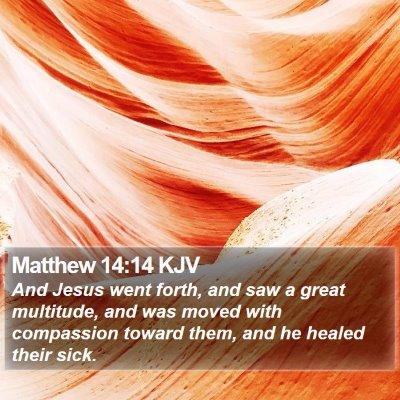 Matthew 14:14 KJV Bible Verse Image