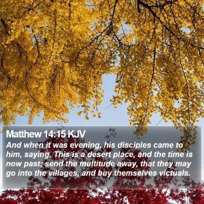 Matthew 14:15 KJV Bible Verse Image