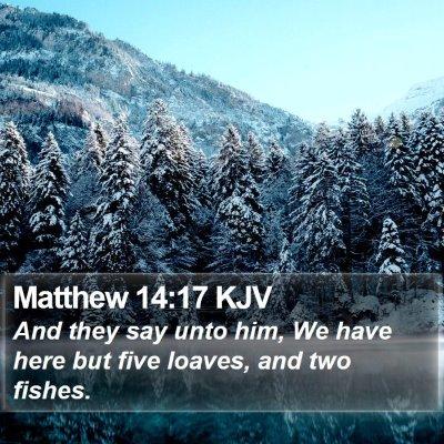 Matthew 14:17 KJV Bible Verse Image