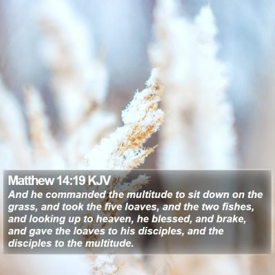 Matthew 14:19 KJV Bible Verse Image