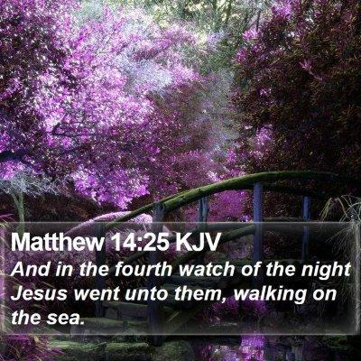 Matthew 14:25 KJV Bible Verse Image