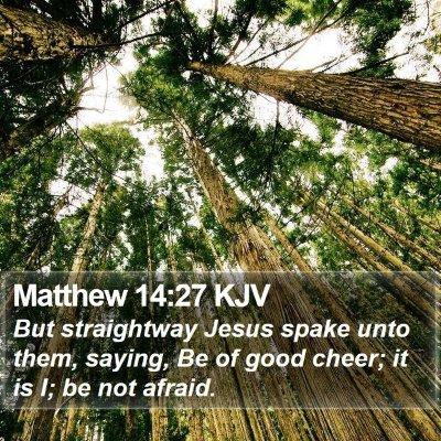 Matthew 14:27 KJV Bible Verse Image
