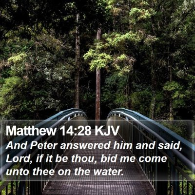 Matthew 14:28 KJV Bible Verse Image
