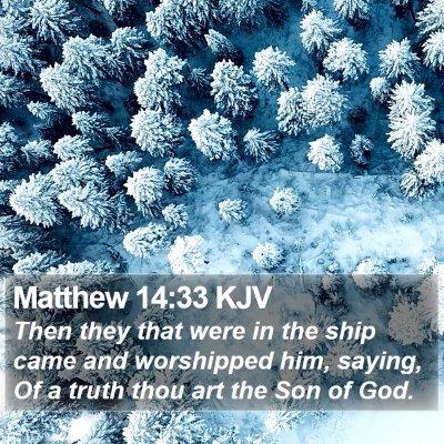 Matthew 14:33 KJV Bible Verse Image
