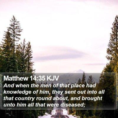 Matthew 14:35 KJV Bible Verse Image