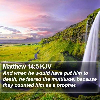 Matthew 14:5 KJV Bible Verse Image