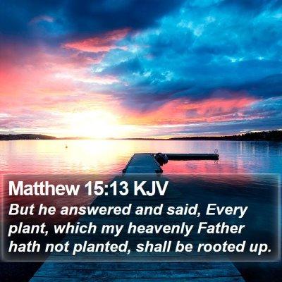 Matthew 15:13 KJV Bible Verse Image