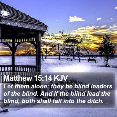 Matthew 15:14 KJV Bible Verse Image