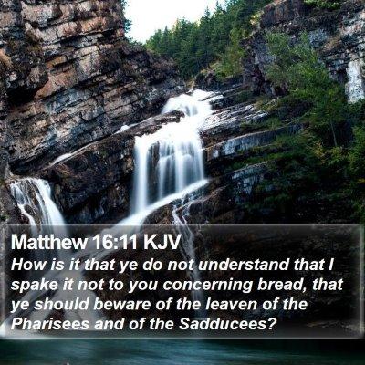 Matthew 16:11 KJV Bible Verse Image
