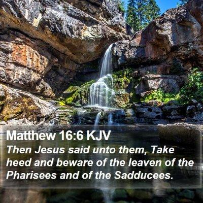 Matthew 16:6 KJV Bible Verse Image