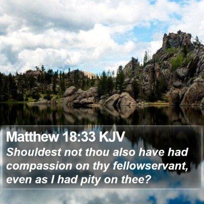 Matthew 18:33 KJV Bible Verse Image
