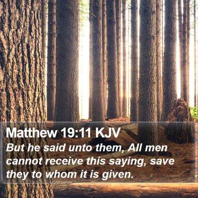 Matthew 19:11 KJV Bible Verse Image