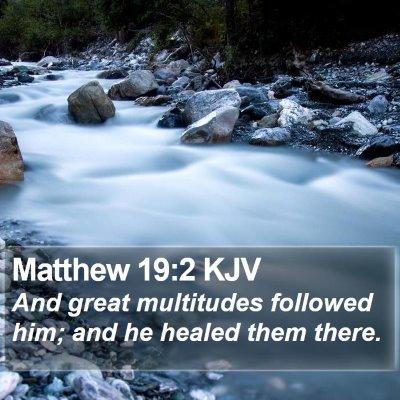 Matthew 19:2 KJV Bible Verse Image