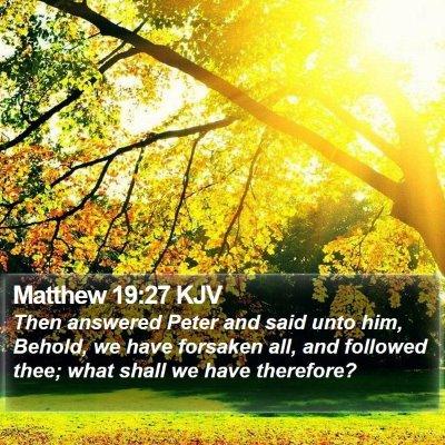 Matthew 19:27 KJV Bible Verse Image