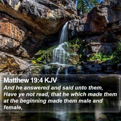 Matthew 19:4 KJV Bible Verse Image