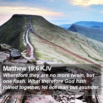Matthew 19:6 KJV Bible Verse Image