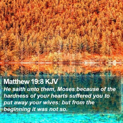Matthew 19:8 KJV Bible Verse Image