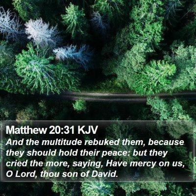 Matthew 20:31 KJV Bible Verse Image