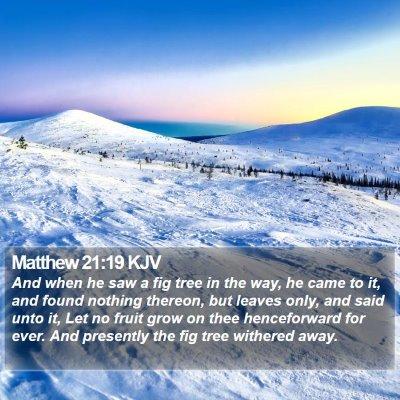Matthew 21:19 KJV Bible Verse Image