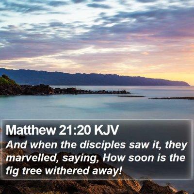 Matthew 21:20 KJV Bible Verse Image