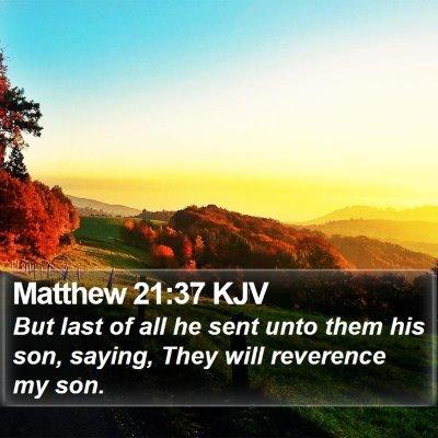 Matthew 21:37 KJV Bible Verse Image