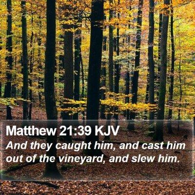 Matthew 21:39 KJV Bible Verse Image