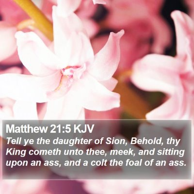 Matthew 21:5 KJV Bible Verse Image