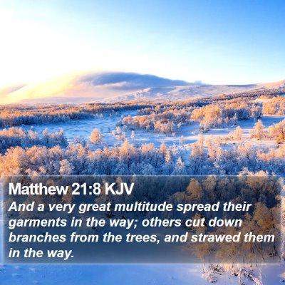 Matthew 21:8 KJV Bible Verse Image