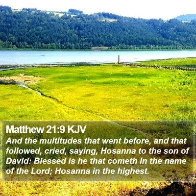 Matthew 21:9 KJV Bible Verse Image