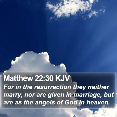 Matthew 22:30 KJV Bible Verse Image